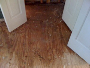 Atlanta Water Damage Repair